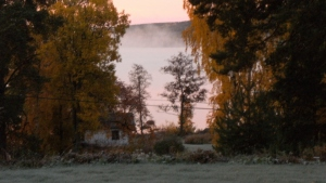 View the morningmist over the lake from the greenhouse.